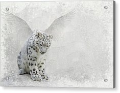 Snow Angel Acrylic Print