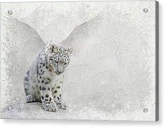 Snow Angel Acrylic Print