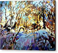 Snow Bank Acrylic Print by Brian Simons