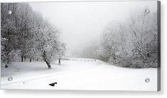 Snow Bound 2014 Acrylic Print