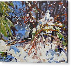 Snow Bound Acrylic Print by Brian Simons