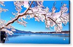 Snow Branch Smith Mountain Lake Acrylic Print by The American Shutterbug Society