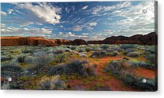 Snow Canyon Evening Glow Acrylic Print by William Gillam