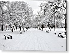Snow Covered Benches And Trees In Washington Park Acrylic Print