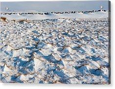 Snow Covered Grass Acrylic Print