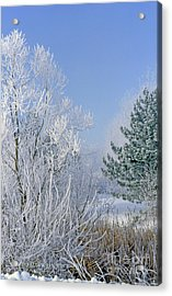 2a357 Snow Covered Trees At Alum Creek State Park Acrylic Print