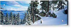 Snow Covered Trees On Mountainside Acrylic Print