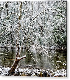 Acrylic Print featuring the photograph Snow Cranberry River by Thomas R Fletcher