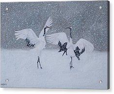 Snow Dancers Acrylic Print