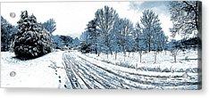 Snow Day Acrylic Print by Greg Joens