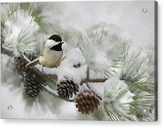 Acrylic Print featuring the photograph Snow Day by Lori Deiter
