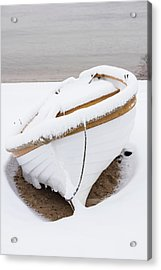 Snow Dory Acrylic Print