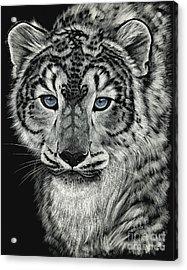 Snow Dragon Leopard Acrylic Print