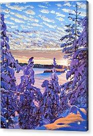 Snow Draped Pines Acrylic Print by David Lloyd Glover