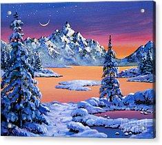 Snow Fantasy Acrylic Print by David Lloyd Glover
