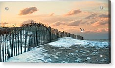 Acrylic Print featuring the photograph Snow Fence by Robin-Lee Vieira