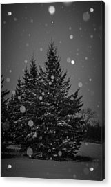 Snow Flakes Acrylic Print by Annette Berglund
