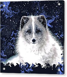 Snow Fox Acrylic Print