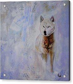 Snow Fox Acrylic Print