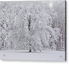 Snow Globe Acrylic Print