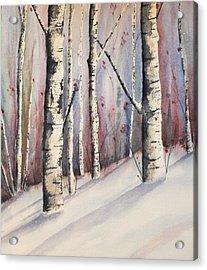 Snow In Birches Acrylic Print