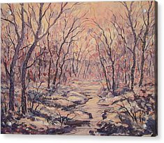 Snow In The Woods. Acrylic Print