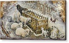 Snow Lambs Acrylic Print by Sorin Apostolescu