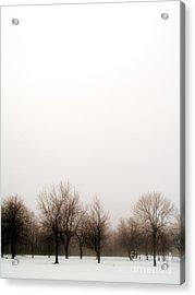 Snow Landscape Acrylic Print by Emilio Lovisa
