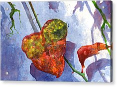 Snow Leaf Acrylic Print by Andrew King
