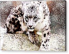 Acrylic Print featuring the digital art Snow Leopard by Barry Jones