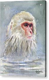 Snow Monkey Taking A Bath Acrylic Print by Olga Shvartsur