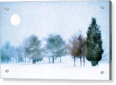 Snow Moon Acrylic Print by Darren Fisher