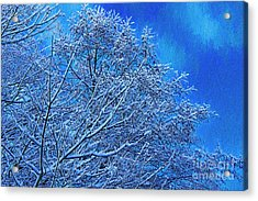 Acrylic Print featuring the photograph Snow On Branches Photo Art by Sharon Talson