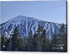 Snow On The Loaf Acrylic Print by Alana Ranney