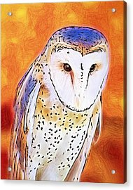 Acrylic Print featuring the digital art White Face Barn Owl by Tracie Kaska