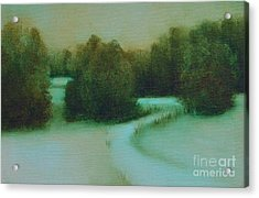 Snow Path Acrylic Print by Jana Baker