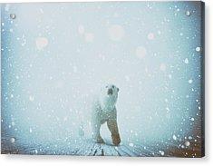 Snow Patrol Acrylic Print