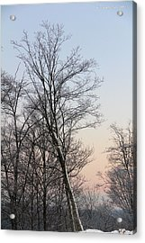Snow Scene Acrylic Print by Carolyn Postelwait