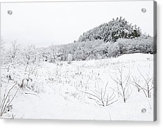 Acrylic Print featuring the photograph Snow Scene by Larry Ricker