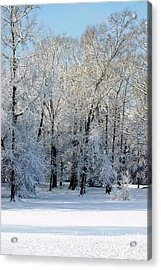 Snow Scene One Acrylic Print by Donna Bentley