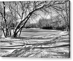 Snow Scripting Acrylic Print