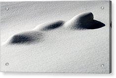 Acrylic Print featuring the photograph Snow Shadows 2 by Douglas Pike