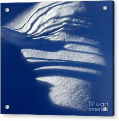 Snow Shadows And Twig Acrylic Print