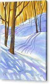 Snow-shadows Acrylic Print by Nancy Newman