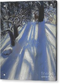 Snow Shadows Acrylic Print