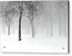Snow Storm At Starved Rock Acrylic Print
