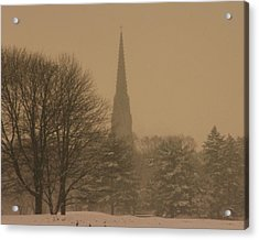 Snow Storm Acrylic Print by Dennis Curry