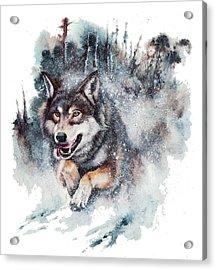 Snow Storm Acrylic Print