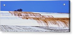 Snow Stubble Tree Line 13955 Acrylic Print by Jerry Sodorff