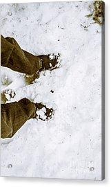 Snow Trekker Acrylic Print by Jorgo Photography - Wall Art Gallery